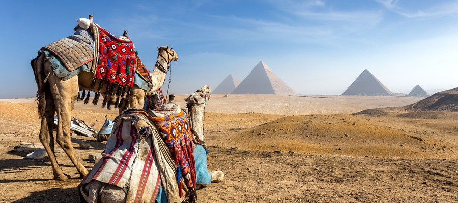 Indispensable Egypte Image 1